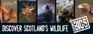 Scotland's Big 5