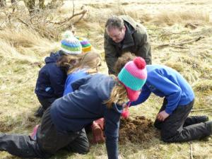 Youngsters tree planting