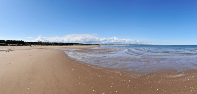 Long sandy vistas make Tentsmuir the perfect place to relax.