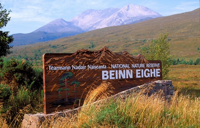 Welcome to Beinn Eighe NNR, © Lorne Gill/SNH