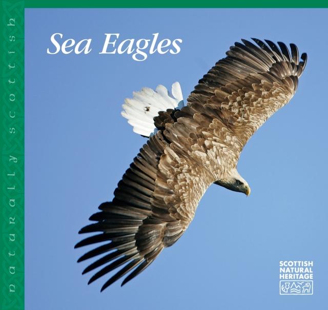 Sea Eagles cover.jpg