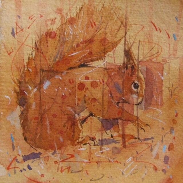 One of Derek's captivating  red squirrel studies