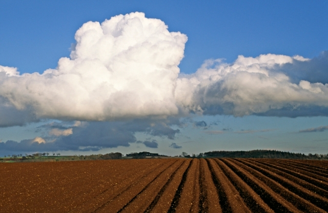 Scotland's soils are remarkably diverse (Image shows Taymount, Stanley, Perthshire)