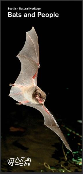 An SNH bat leaflet
