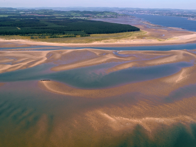 Aerial view of Tentsmuir NNR