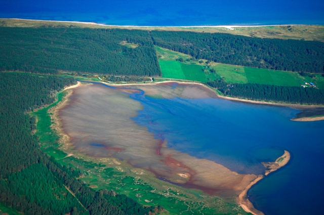 Aerial view of Loch Fleet NNR