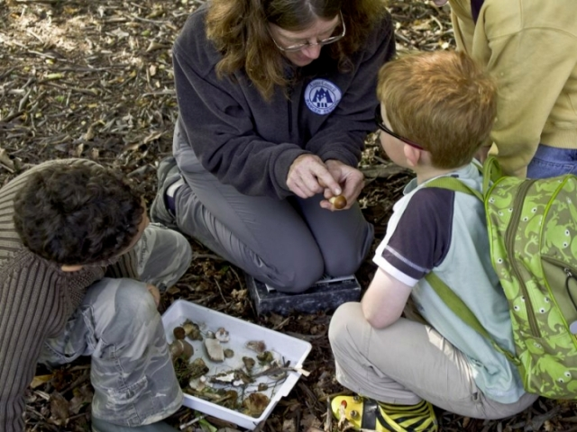 Young mycologists with a Countryside Ranger. Fungi forays can be a family activity.