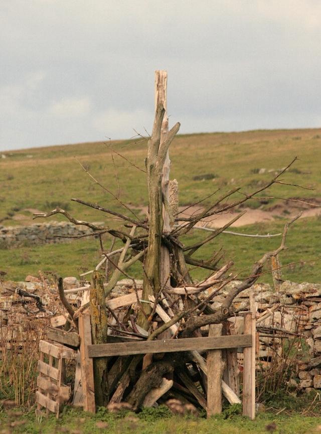 The new stick tree at Gungstie