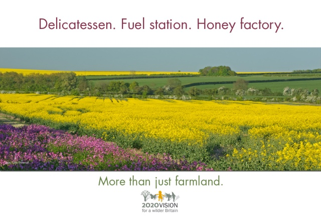 2020V poster - farmland