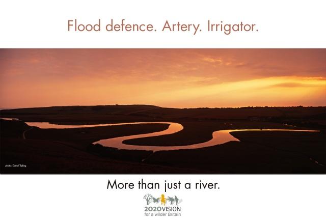 2020V poster - river