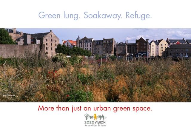 2020V poster. Urban greenspacepsd