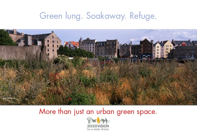 2020V poster. Urban greenspacepsd