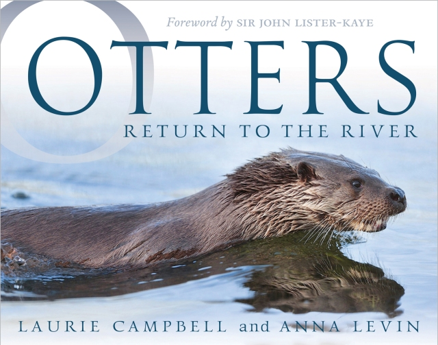 Otters Return to the River