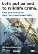 0145-15-AR-Wildlife-Crime-Poster-generic