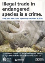 0145-15-AR-Wildlife-Crime-Poster-subtopic-CITES