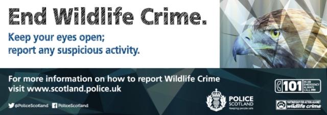 145-15-AR-Wildlife-Crime-banner-725x255px