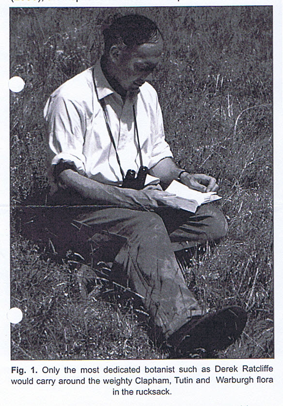 Derek Ratcliffe