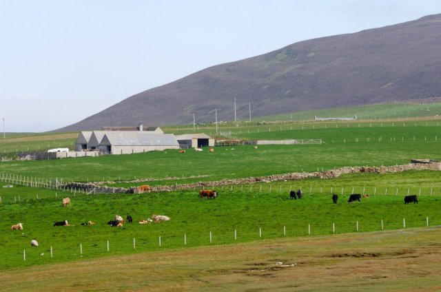 Orkney-D0014.jpg