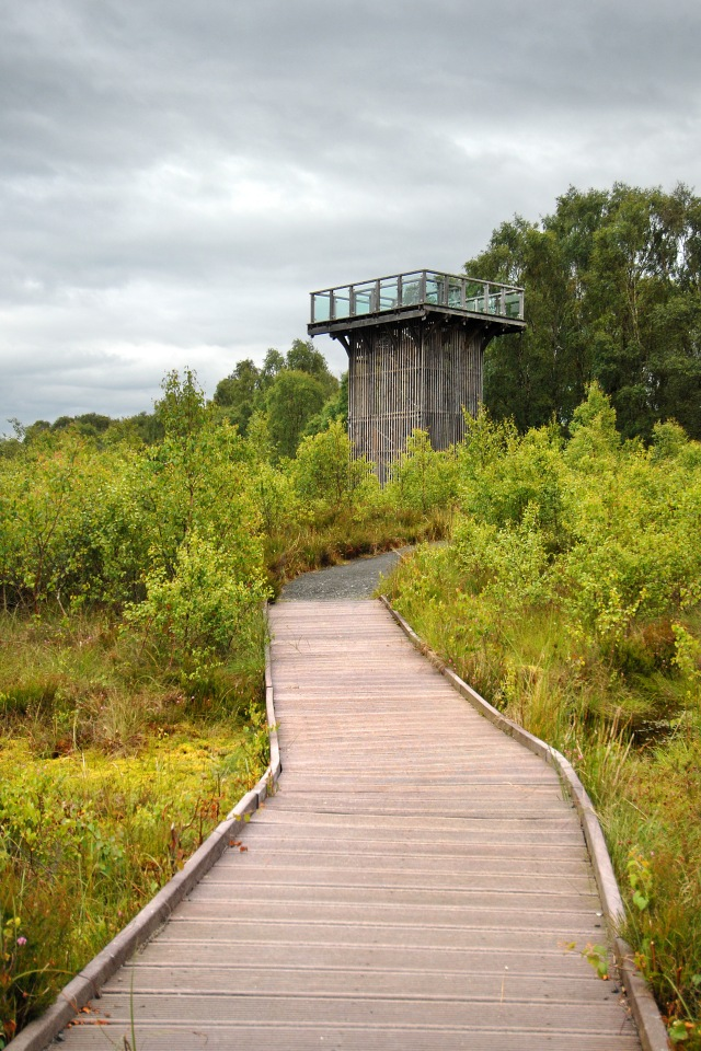 The viewing tower at Flanders Moss NNR.