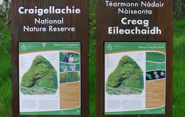 Craigellachie NNR