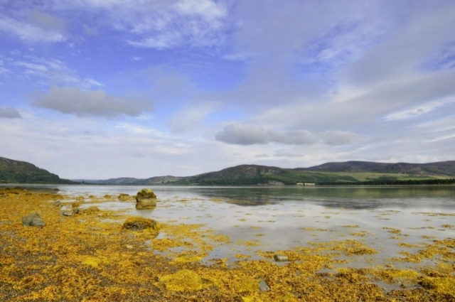Loch Fleet National Nature Reserve, © Lorne Gill/
