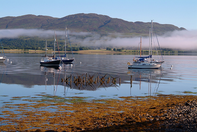 Moorings in Loch Creran Special Area of Conservation, © SNH/Graham Saunders
