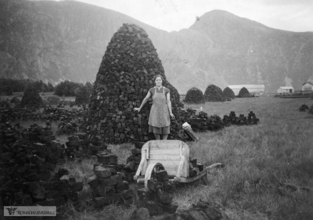 A photo showing peat cutting - which could have been an accurate depiction of Norway any time between the 1920s and 1950s before regeneration of woodland took hold.