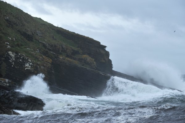 A stormy sea and big waves at Lybster harbour, Image credit: Lorne Gill/SNH