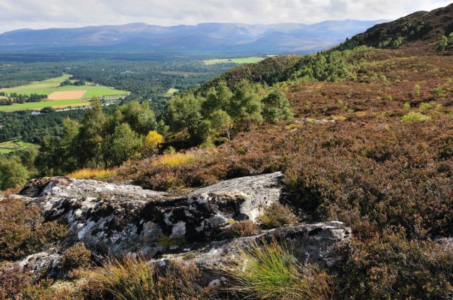 View south west over the Cairngorms from the hilltop viewpoint. ©Lorne Gill/SNH