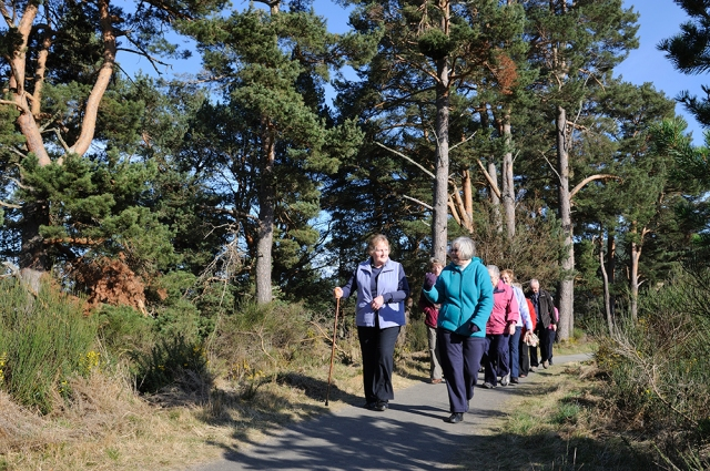 Walking to Health project walking group on their weekly walk at Ballater, Grampian. ©Lorne Gill/SNH