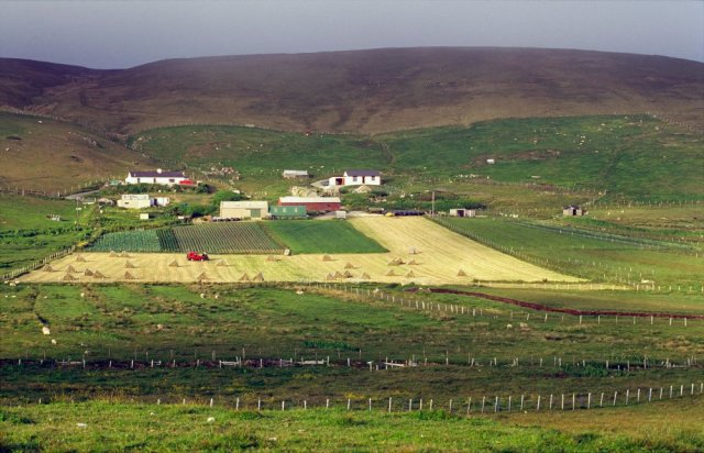 Croft in Shetland, Northern Isles Area. ©Lorne Gill/SNH