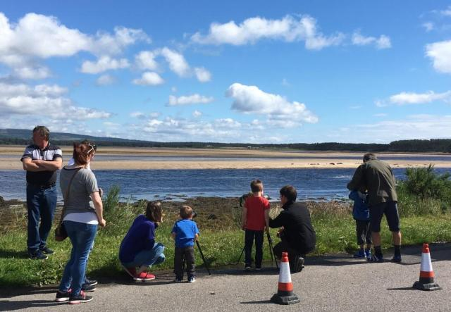 Everyone could enjoy the seal watching at Loch Fleet NNR Seal Watch event.