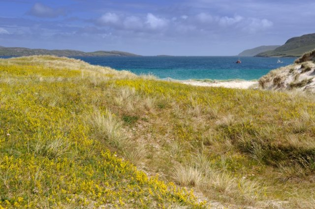 The Vatersay machair. ©Lorne Gill