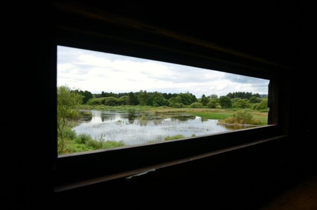 View from the hide of he North Loch at Morton Loch NNR. ©Lorne Gill/SNH