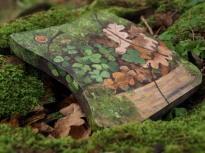 My Way through Birky Bank. Picnic Oak's Table.