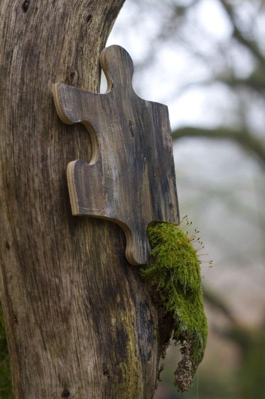 Woodland Jigsaw. Piece in situ.