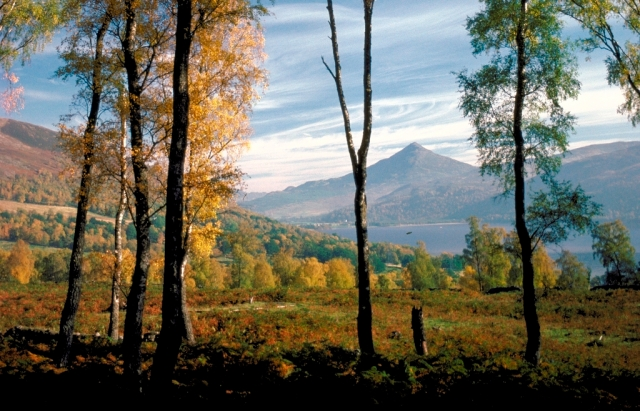 Schiehallion's conical form. © Lorne Gill/SNH
