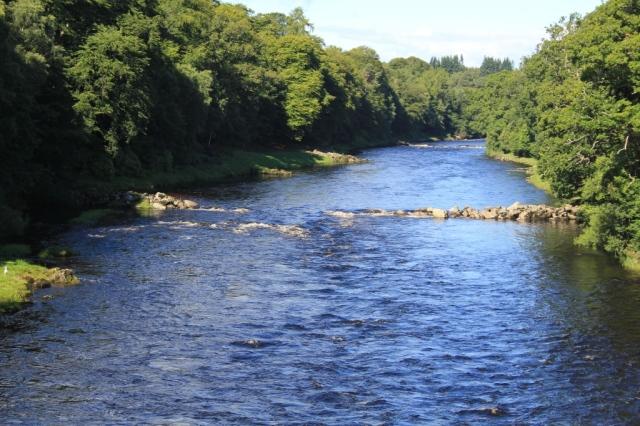 A section of the River Dee beforerestoration work. ©Lorne Gill/SNH