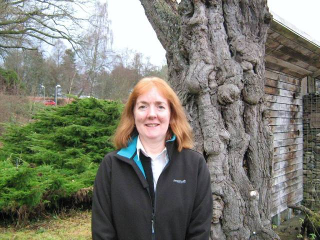 Photo of Alison Matheson