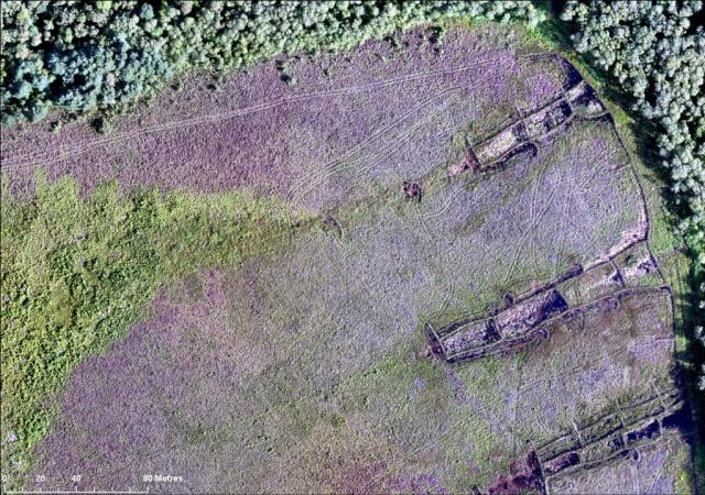 UAV image showing peat bunding at Carsegowan Moss, Galloway. ©SNH
