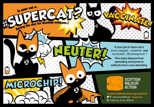 Supercat campaign poster.