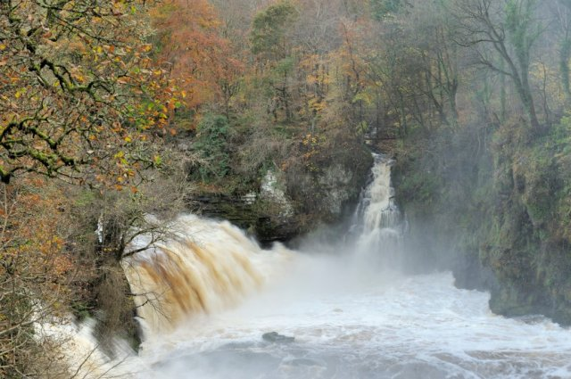 Bonnington Linn, Clyde Valley Woodlands NNR. ©Lorne Gill/SNH