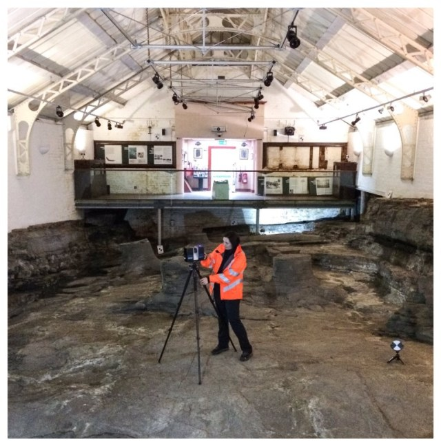 Lyn laser scanning the fossilised tree stumps.