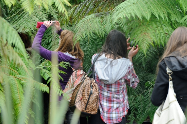 Pupils from Kelvinside Academy Glasgow on a photography workshop at the Glasgow Botanic Garden.