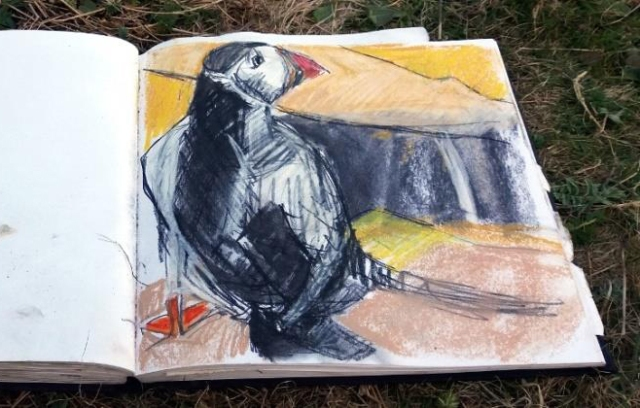 Puffin drawing, sketchbook.