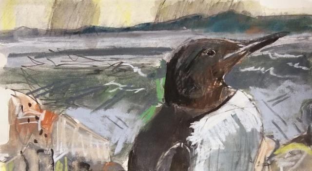Cliff top Guillemot, mixed media on paper.