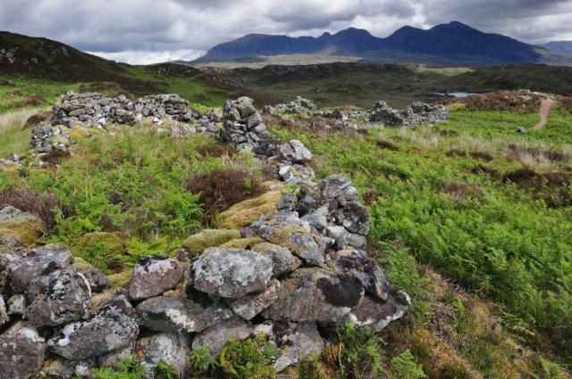 Remains of old drystane walled sheilings at Little Assynt estate. ©Lorne Gill/SNH/2020VISION