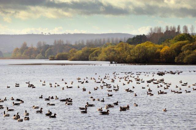 Loch Leven-D9585.jpg