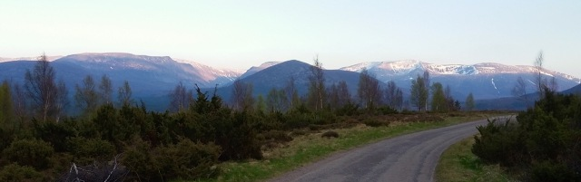 Evening Light on Am Monadh Ruadh. © Judith Nott