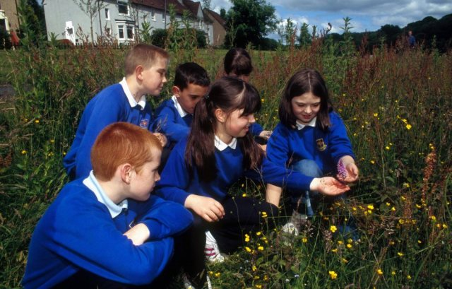 Learning outdoors in Glenboig Village Park. ©George Logan/SNH